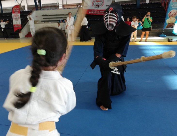 Tresse contre casque, judo contre kendo  - Photo : Mike Leyral