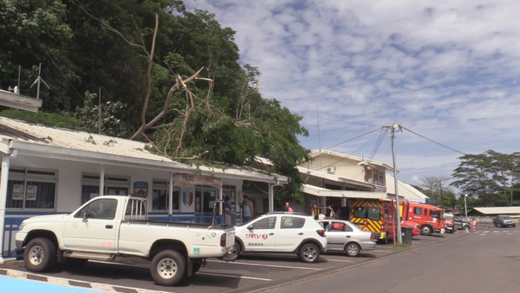Mahina : un arbre tombe sur la brigade municipale, la sécurité des agents en question