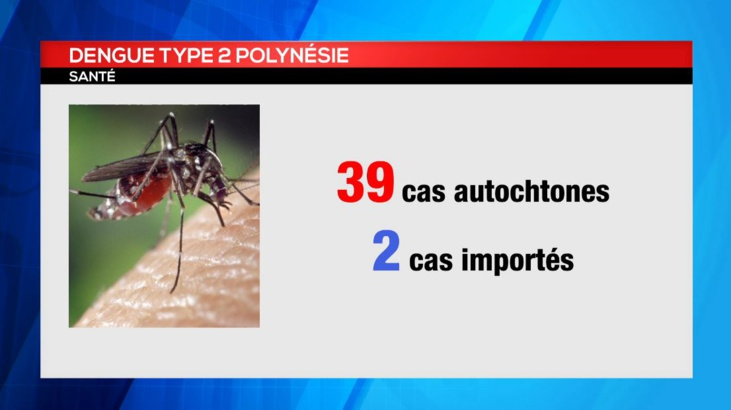 Dengue de type 2 à Tahiti : le point sur la situation