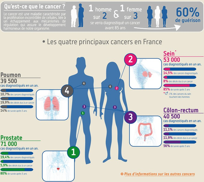 Source : www.ligue-cancer.net