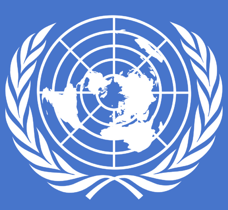 Nations Unies : adoption de la résolution 2249 à l'unanimité